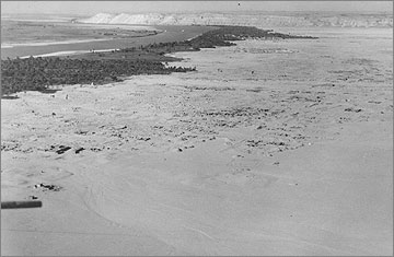 The Main City of Amarna, viewed to the north, in March 1932. The southern expedition house of the EES is near the left margin of the picture, halfway down