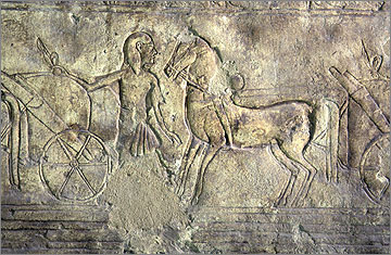 Horse, groom and chariot, Tomb of Meryra, no. 4