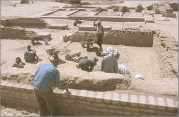 Repairs to the brickwork at the back of the North Palace