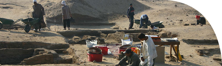 Excavation in progress amongst a group of small houses in the Main City (grid 12), March 2005.