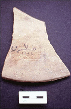 (Fig.9) Part of a hieratic inscription on a Canaanite amphora sherd listing the original contents of the vessel: honey
