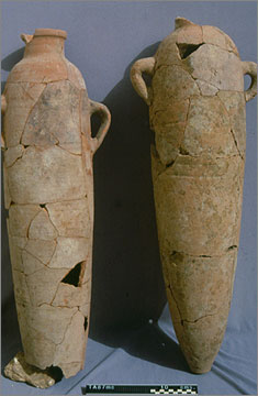 Two narrowly cylindrical amphorae made in 'oasis fabric' and so probably used to bring in wine from the western desert oases